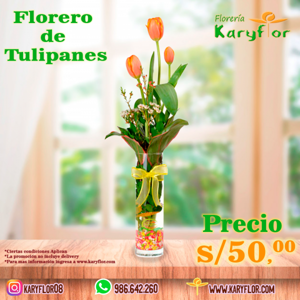 3 tulipanes .5.1