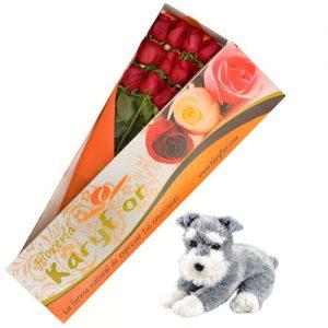 Caja de 12 Rosas con Peluche Perrito (según stock, variedad de peluches) incluye tarjeta dedicatoria y preservante. Pueden adicionar Chocolates y más, ingresando a la opción REGALOS en la parte superior de la Pág. web.