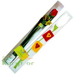 Caja de 1 rosa con decoración de flores o corazoncitos ( sujeto a stoc Pueden agregar chocolates y globos, ingresando a la opción regalos