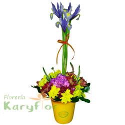 Arreglo floral elaborado en cerámica con variedad de flores, iris y veronica, incluye tarjeta de dedicatoria.. Pueden agregar adicionales ingresando a opción REGALOS.